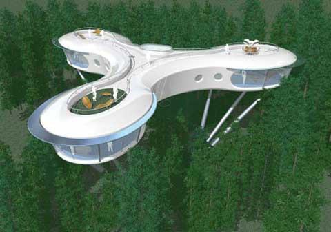 La Casa En El árbol Urbanarbolismo