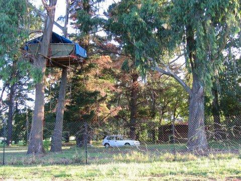 Instrucciones de como construir una casa en el árbol.