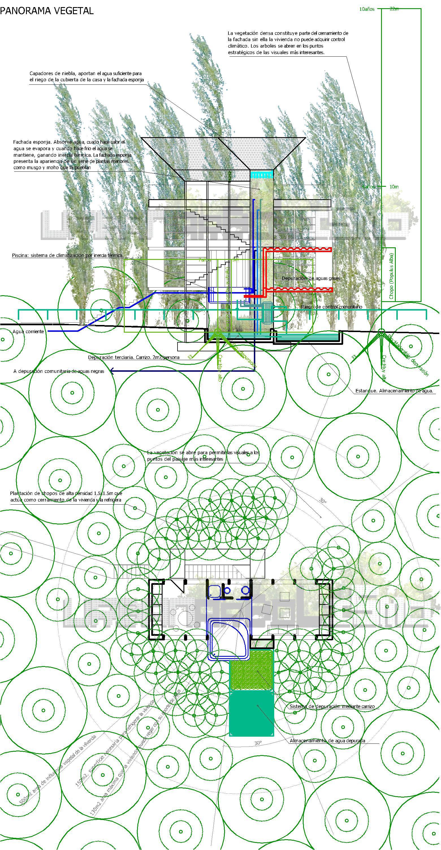 Vivienda panorama vegetal. Urbanarbolismo