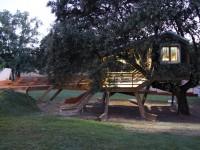 La casa en el árbol Enraizada