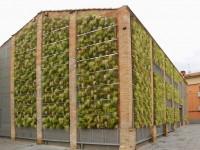 Jardín vertical de bajo mantenimiento en Rubí. Barcelona.