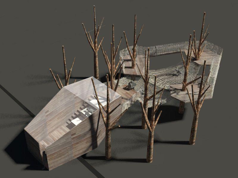 casas en el rbol la casa pinus