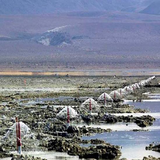 5000 fuentes millones de m3 de agua s lo para controlar for Piscinas ecologicas pdf