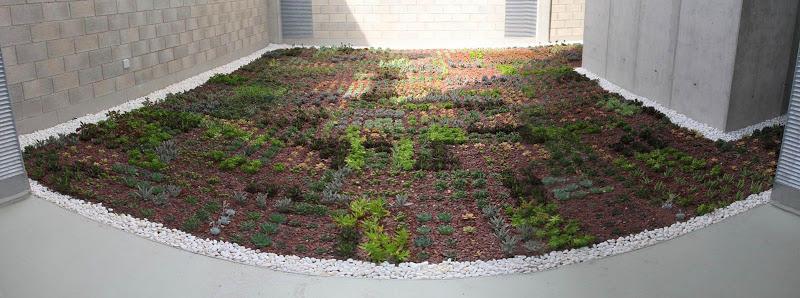 Cubierta vegetal sistemas constructivos urbanarbolismo for Piscinas naturales pdf