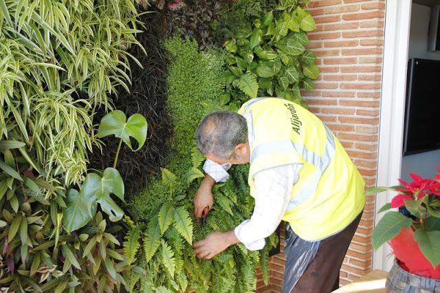 Mantenimiento de jardines verticales urbanarbolismo for Jardines verticales pdf