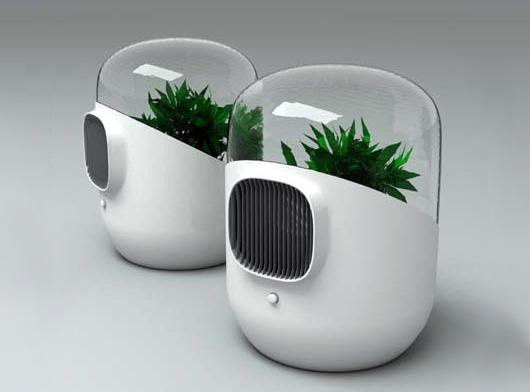 Como utilizar plantas para absorber contaminantes del aire for Plantas de aire