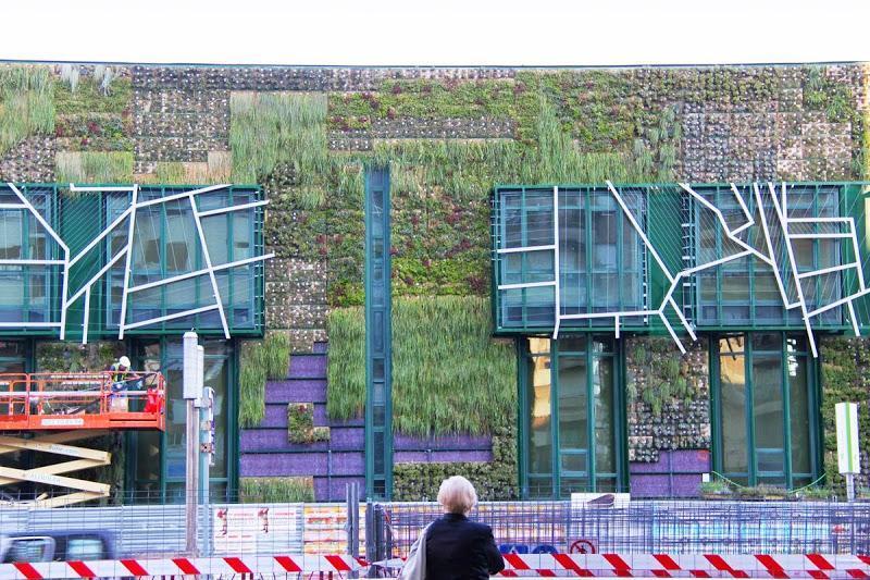 Plantando el jardín vertical del Palacio de Congresos de Vitoria-Gasteiz