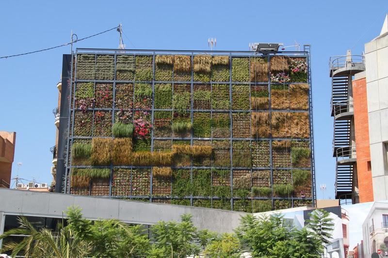 Jard n vertical en san vicente urbanarbolismo for Estructura para jardin vertical