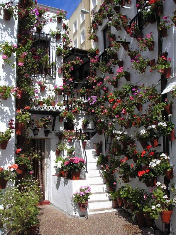 Los patios cordobeses urbanarbolismo - Imagenes de patios andaluces ...