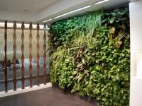 Jardín vertical interior LeafBox en Madrid