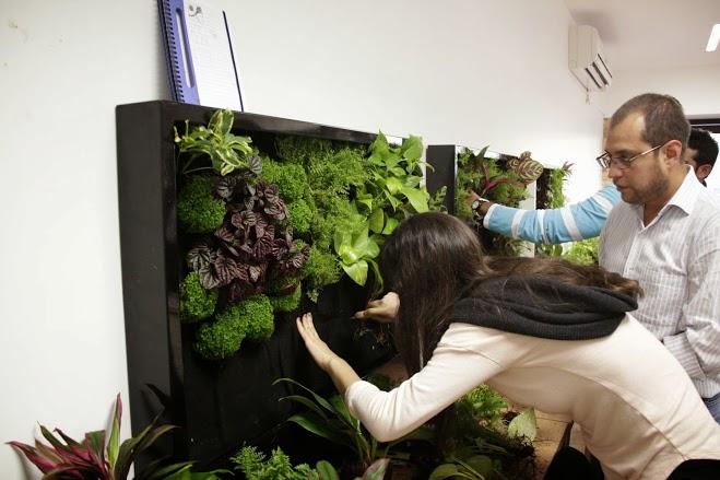 Ltimas plazas para el curso de jardines verticales de for Jardines verticales pdf