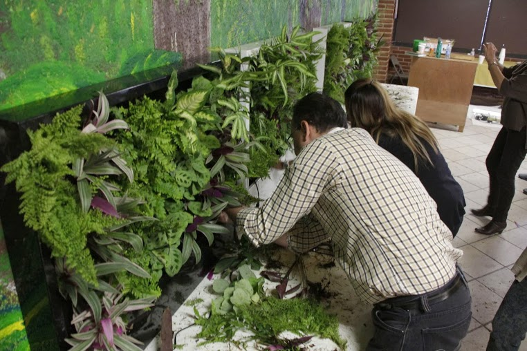 Im genes del curso de jardines verticales de m xico for Imagenes de jardines verticales
