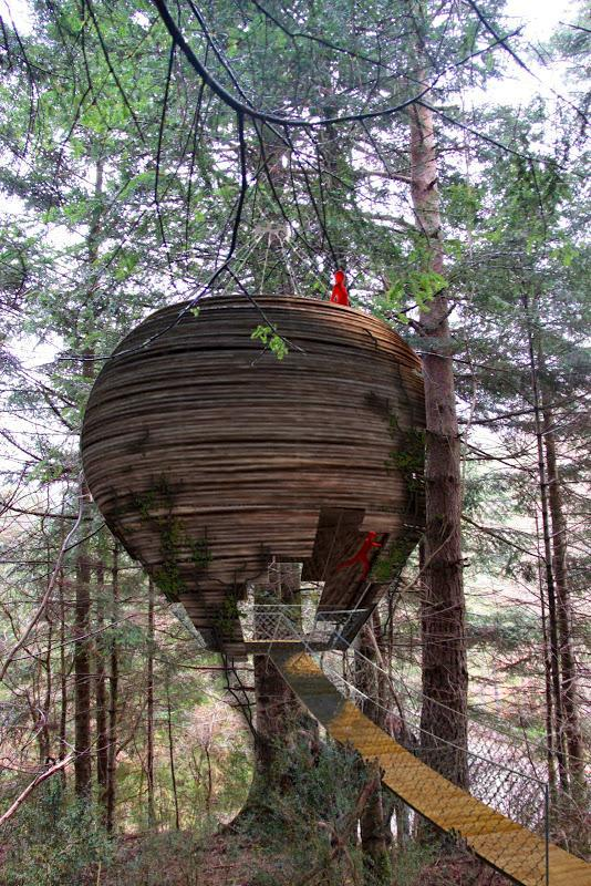 Casas en el arbol la casa nido complejo hotelero - Casas en el arbol ...