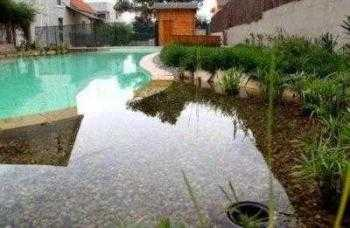 Piscina natural comestible en Valencia