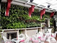 El primer jardín vertical de Toledo