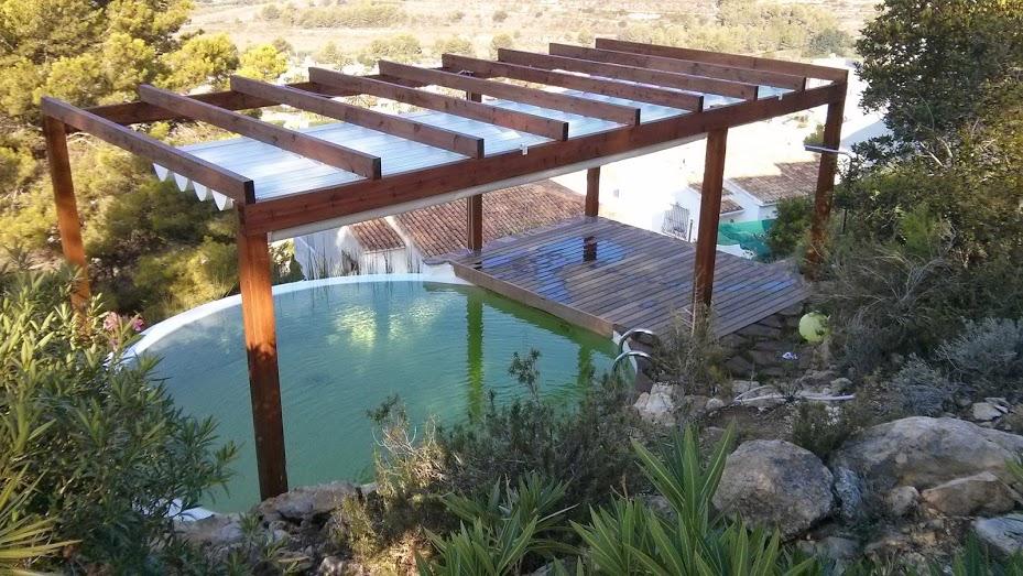 Evoluci n del dise o de una piscina natural urbanarbolismo for Diseno de piscinas pdf