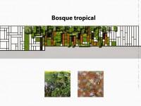 Diseño de jardín vertical para una vivienda en México