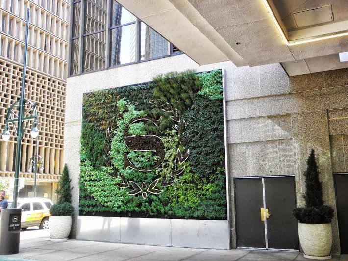 curso de jardines verticales ciudad de m xico 12 y 13 de On instalacion de jardines verticales