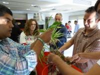 Diez razones para hacer los cursos de jardines verticales de Urbanarbolismo.