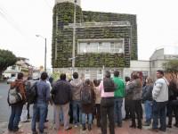 Curso avanzado de jardines verticales en Colombia