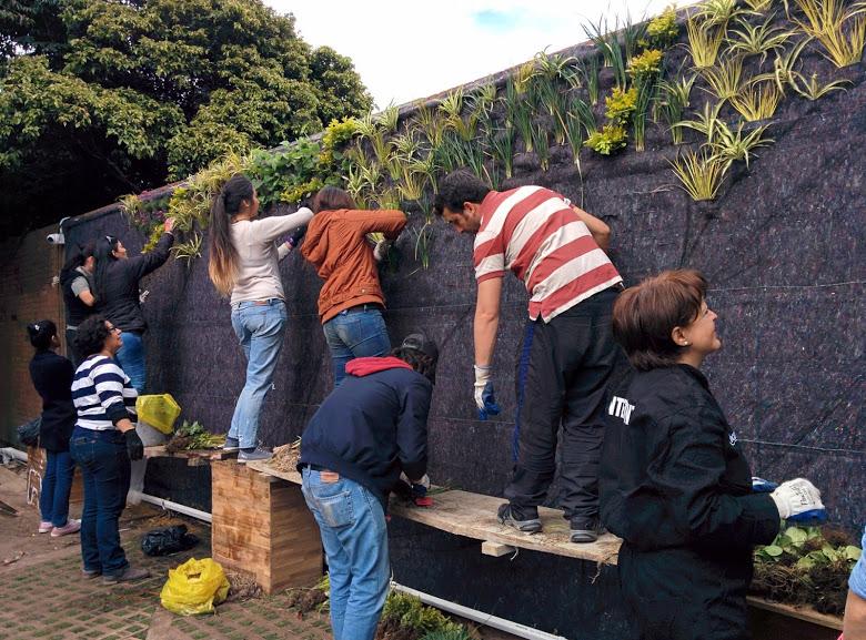 Jard n vertical en el bot nico de bogot colombia for Jardin botanico cursos