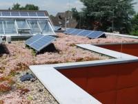 Beneficios de las placas solares en cubiertas vegetales