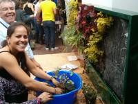 Nuevo curso en Medellín: Los sistemas vegetales como piel en la edificación