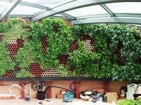 Jardín vertical interior en Londres con sistema Eco.Bin.