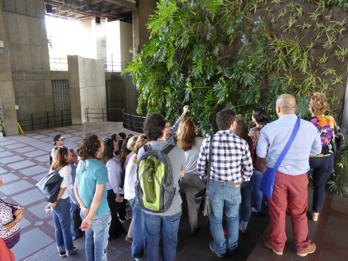 Nuevo curso en ecuador de jardines verticales y cubiertas for Jardines verticales ecuador