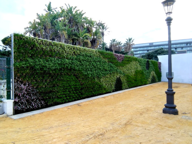 Jard n vertical en c diz parque genov s urbanarbolismo for Jardin vertical mercadolibre