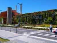 Evolución del jardín vertical de Vitoria-Gasteiz, jardines que se autorregeneran