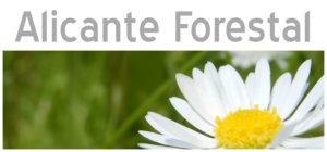 Alicante Forestal