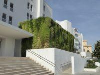 Jardín vertical en Mallorca. Hotel HM Tropical.