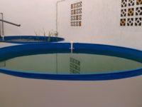 Instalación de una piscina natural en nuestra nueva oficina